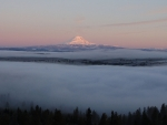 Mt Adams morning alpen glow and clouds below