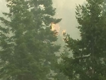 Jolly Mtn - Fire flaring in tall trees