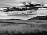 Fall photo - High Prairie & Columbia Hills B&W