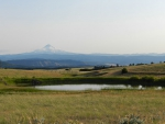 Spring photo - Mt. Hood from Hartand Rd