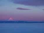 Mt Adams & low fog sunrise 1 18 13