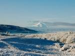 Winter scene with Mt. Hood
