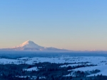 webMt. Adams, Mt. Rainier & Goat Rocks in Snow, Peg Caliendo