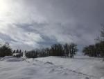 Winter sky 2 - 3-7-19 - Jocelyn Weeks