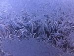 Winter's frozen fireworks - 1-1-19 - Jocelyn Weeks